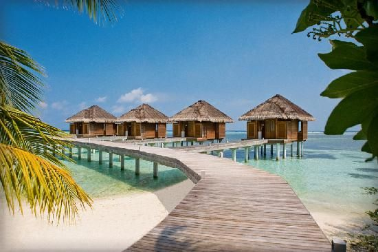 BookingGrabber recommend to you LUX* Maldives 5star Resort Dhidhoofinolhu, South Ari Atoll, Maldives