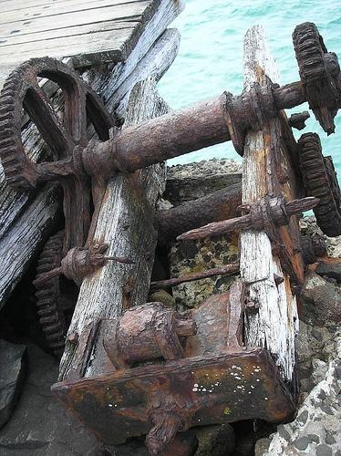 Cartwheel remains at Bawley Point Beach | Flickr - Photo Sharing!