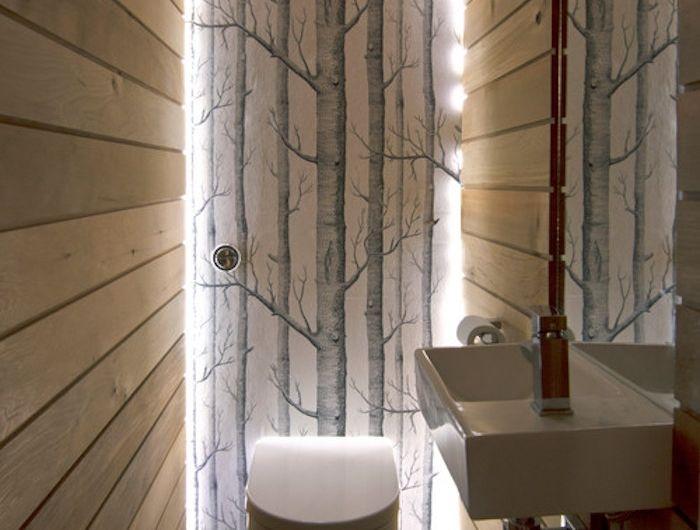 The 25+ best Deco wc original ideas on Pinterest   Meuble wc ...