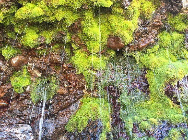 Natural aquifers