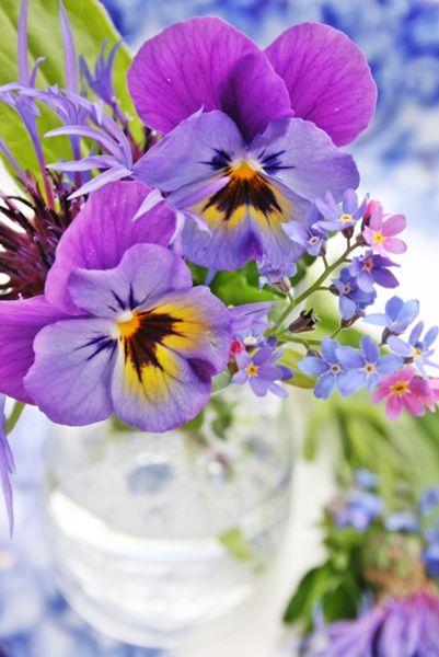 VIBEKE DESIGN: pretty pansies * Flores - Blog Pitacos e Achados -  Acesse: https://pitacoseachados.com  – https://www.facebook.com/pitacoseachados – https://plus.google.com/+PitacosAchados-dicas-e-pitacos https://www.h2h.com.br/conselheirapitacosachados #pitacoseachados