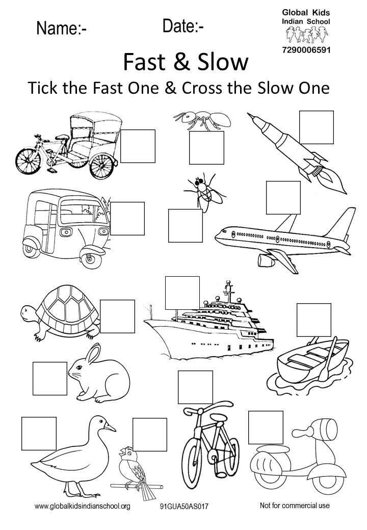 91gua50as017 Wonderland Fast And Slow Activity Sheets Activities