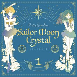 Welcome to my full episode guide for the new Sailor Moon anime series, Pretty Guardian Sailor Moon Crystal! On this page you'll find complete episode titles, plot summaries, screencaps, shopping links for the Sailor Moon Crystal DVDs and Blu-rays and links for where to watch the anime episodes online!