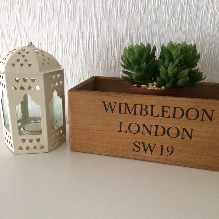 New cactus for the Wimbledon crate