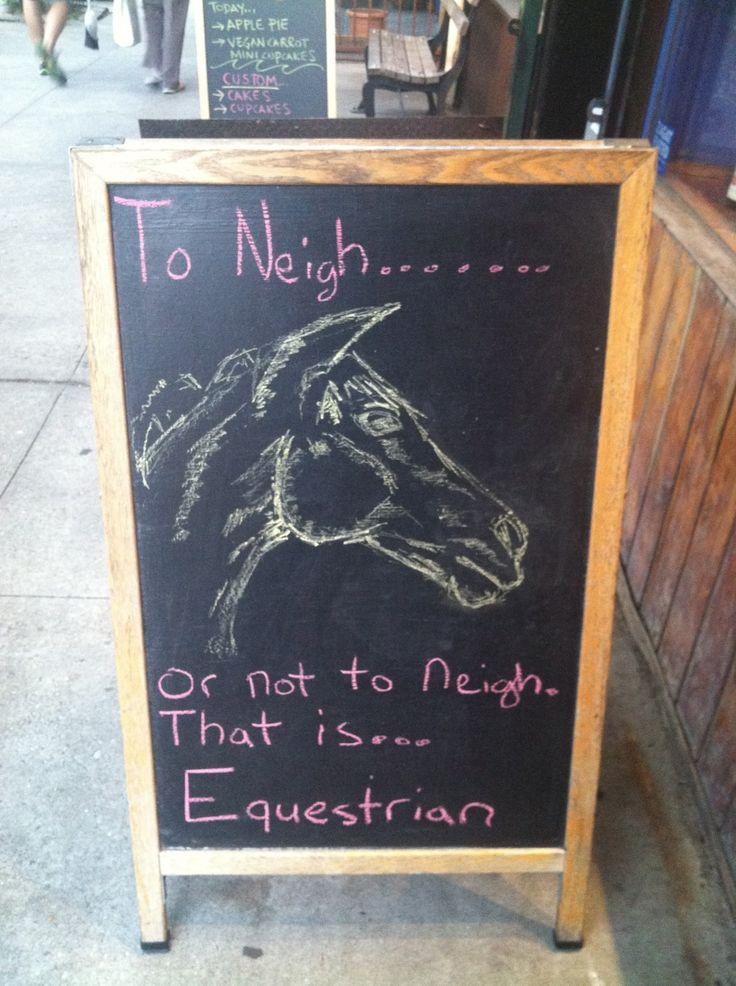 Best horse puns