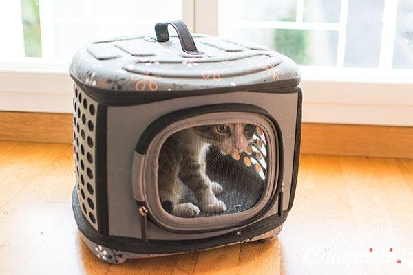 quelle bo te de transport choisir pour mon chat sac de transport tuscani soft kitty. Black Bedroom Furniture Sets. Home Design Ideas