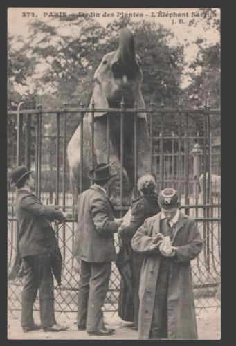 elephant bastille gavroche