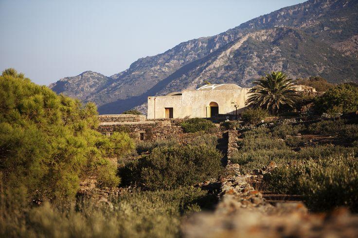 Dammuso Grande – 8 people — Tenuta Borgia - Dammusi Pantelleria