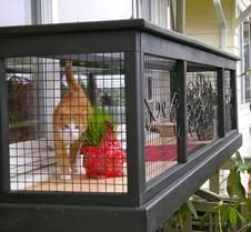 Design a Window Box catio outside a western exposure window for Serena to bask in the sun. ​