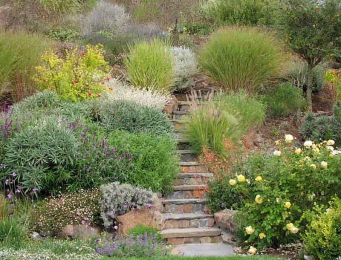 A Steep Hillside Is Turned Into A Lush Landscape Derviss Design In 2020 Backyard Landscaping Sloped Garden Sloped Backyard