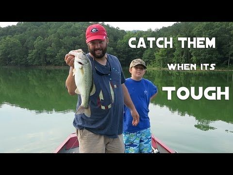 Bass Fishing - Can't Get a Bite? Here's Three Ways To Catch Them - YouTube More