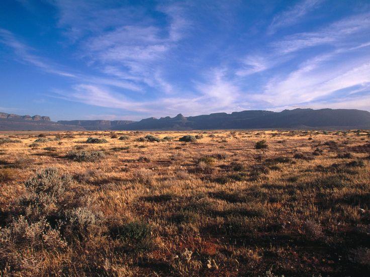 Karoo, South Africa - Partial Desert. Karoo, South Africa