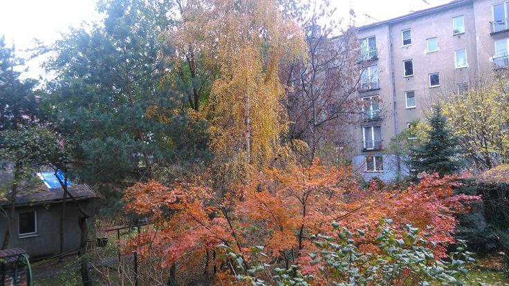 interior autumn's garden