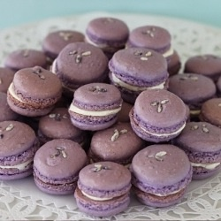 Lavender and Olive Oil Macarons - a savory combo for a sweet treat!