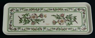 Portmeirion Melamine Sandwich Tray-- Variations pattern by  Susan Williams-Ellis, made in the U.K.