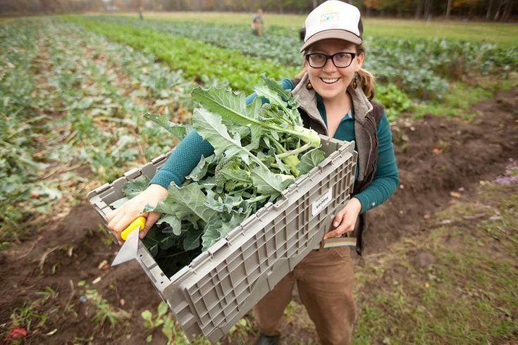 learn to farm | the Farm School