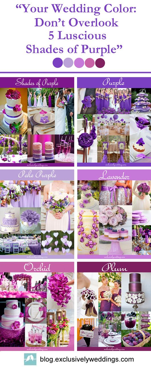 "Purple Wedding Colors | ""Your Wedding Colors: Don't Overlook 5 Luscious Shades of Purple"" 