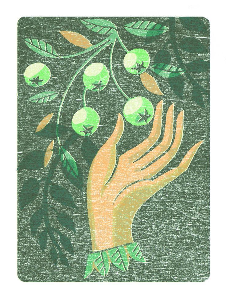 June small illustration for Gardens Illustrated