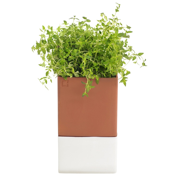Self-watering planter.  Contact me at info@delamarieinteriors.com to find out more about Cult Design Sweden items.