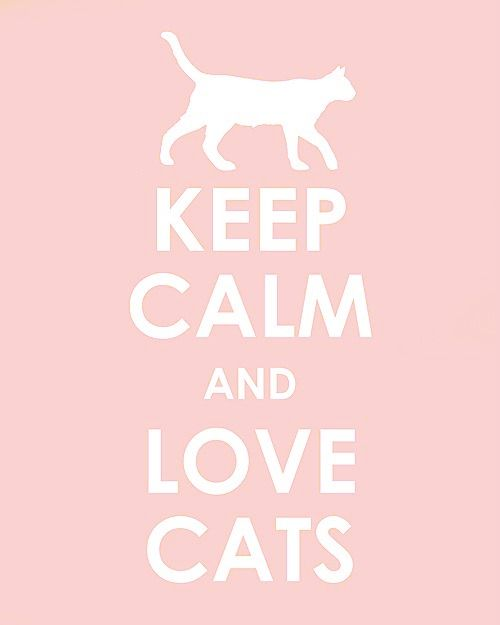 Keep Calm and Love Cats :)