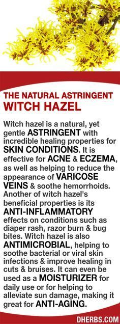 @: Witch hazel is a natural & gentle ASTRINGENT with healing properties for SKIN CONDITIONS. It's effective for ACNE & ECZEMA, and helps to reduce the appearance of VARICOSE VEINS & soothe hemorrhoids. It has ANTI-INFLAMMATORY effects for diaper rash, raz