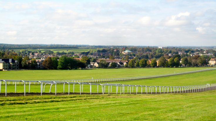 Newmarket Gallops, Suffolk.