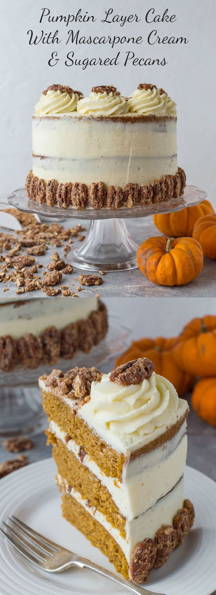 Pumpkin layer cake with mascarpone cream and sugared pecans - utterly irresistible! #pumpkin #cake #pumpkinspice #baking
