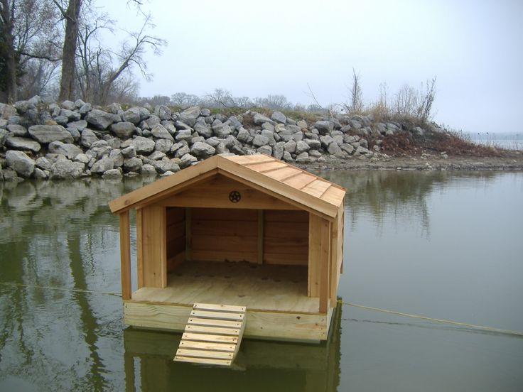 17 best images about duck house on pinterest worcester for How to build a floating house