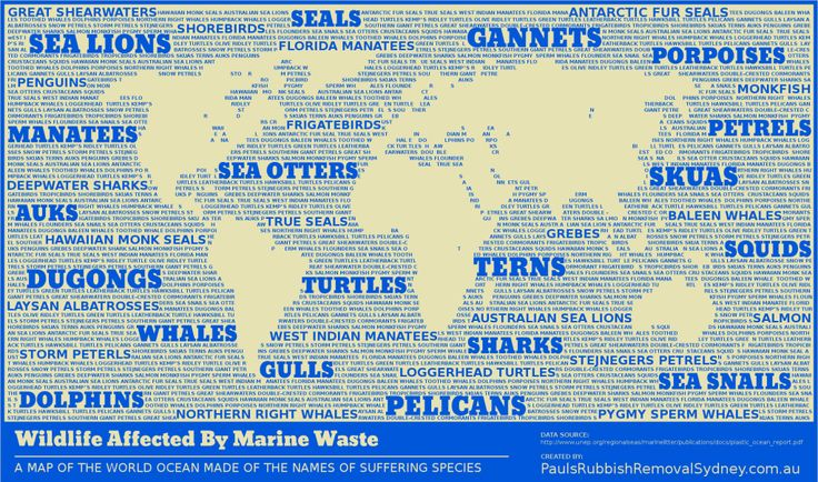 'Wildlife Affected By Marine Waste' by http://paulsrubbishremovalsydney.com.au - A map of the world ocean made entirely of text, listing animals that suffer due to the rubbish left underwater.