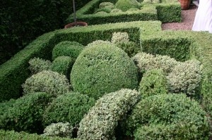 55 Best Knot Gardens Images On Pinterest Vegetable Garden Beautiful Gardens And Gardening
