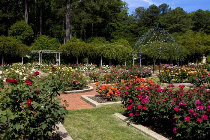 40419047652aa80681c4db3e139b9ea0 - Birmingham Botanical Gardens Spring Plant Sale