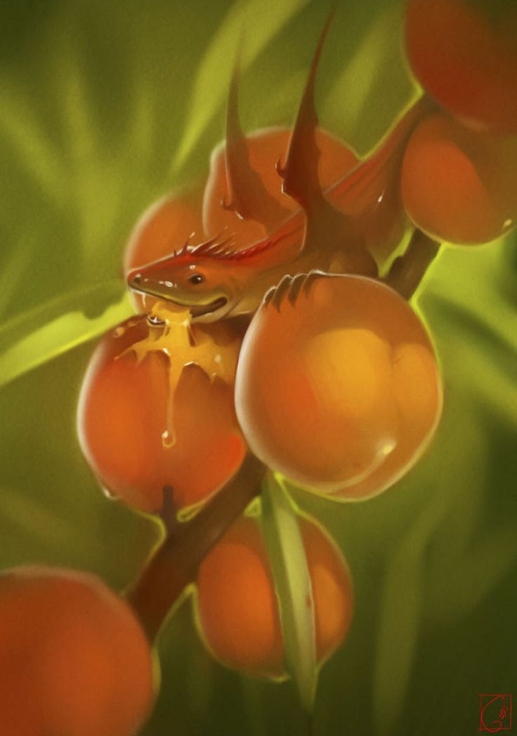 "Fruit Dragons, les créatures ""fantasy"" de GaudiBuendia : peach"