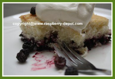 Black Raspberry Cobbler