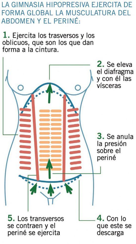 tabla abdominales hipopresivos - Buscar con Google