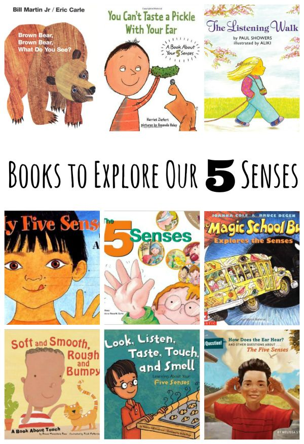Choix de livres pour explorer nos 5 sens   – K Science