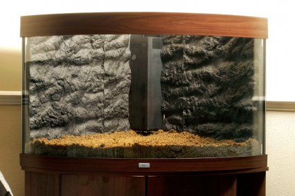 How to set up a planted tropical community aquarium | Features | Practical Fishkeeping