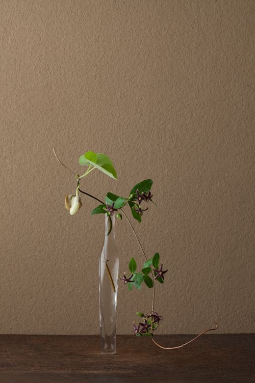 Today's ikebana by Toshiro Kawase, Japan (16/6/2012)