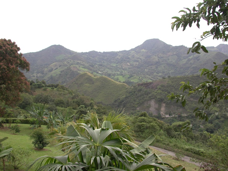 Vista a las montañas.