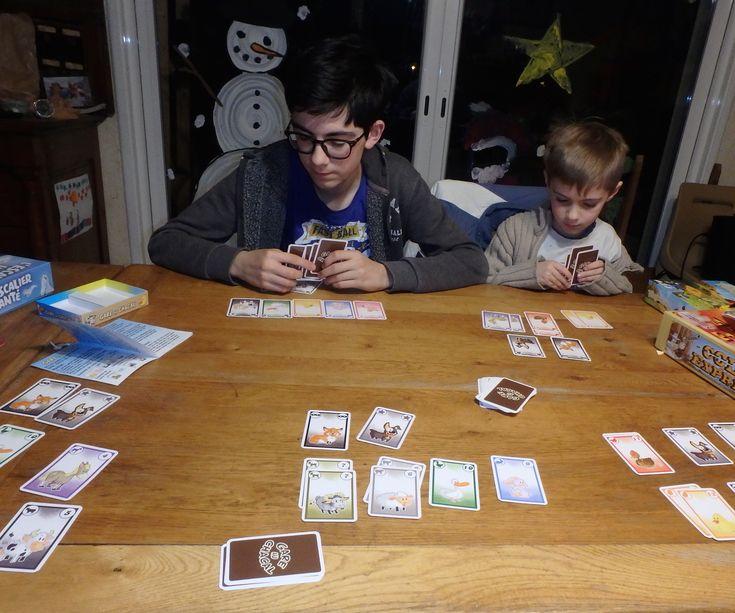 Je voulais vous présenter aujourd'hui Gare au chacal, un petit jeu de cartes sympa, cadeau d'anniversaire de Noé, jouable à partir de 6 ans mais intéressant aussi pour les grands ! Le b…
