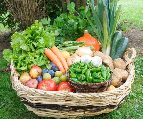 Contenido cesta de frutas y verduras ecológicas