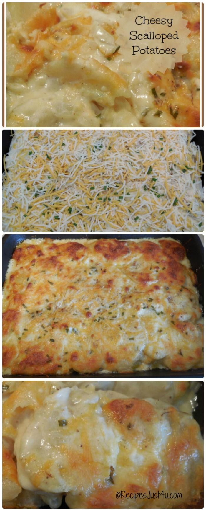 Easy recipes for cheesy scalloped potatoes