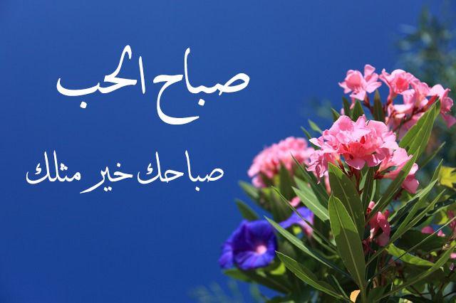 صباح الحب مكتوبة علي صور بأشكال مختلفة رومانسية موقع حصرى Good Morning Love Morning Love Islamic Quotes Wallpaper