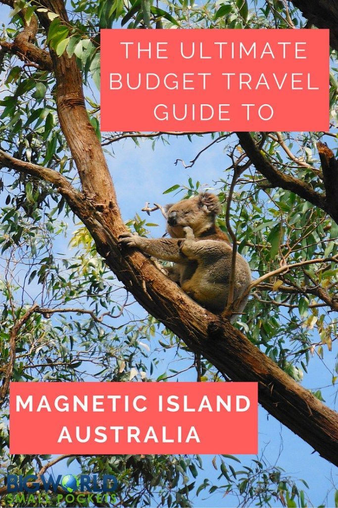 Ultimate Budget Travel Guide to Magnetic Island in Australia {Big World Small Pockets}