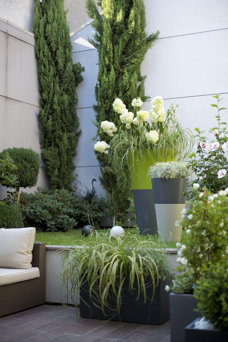 Un patio au coeur de la ville, c'est un peu comme une balade dans les jardins secrets d'une cité antique. Structurez l'espace de ce jardin verdoyant, frais et d'une simplicité naturelle avec des végétaux structurants, comme les hydrangeas, mais aussi les buis et les bambous.