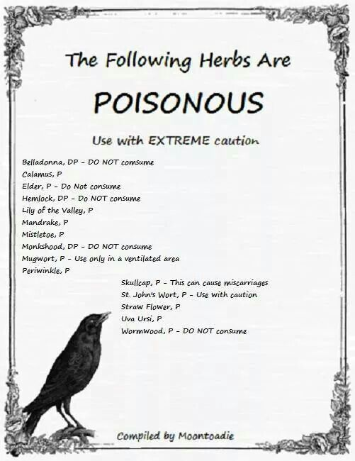 """Poison Herbs - Pinned by The Mystic's Emporium on Etsy"" ---   Hmm, I would add several garden and houseplants.  People, please do your research if you are looking into the herbal path, whether for magick or for healing!  I highly recommend books by Paul Beyerl, M. Grieve, Dr. James Duke, Rosemary Gladstar...  Do not walk this path on a whim.  You must do the work!  ~ Julia"