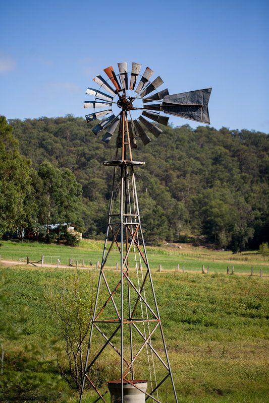 Hunter Valley scenery / Hilary Cam