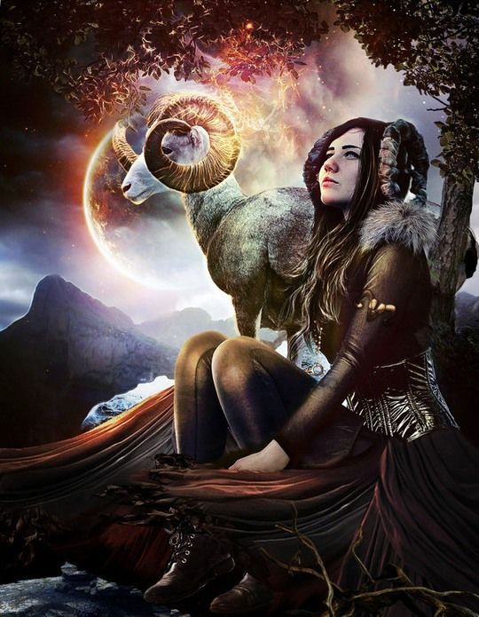280 best images about aries the ram on pinterest for Flowers for aries woman