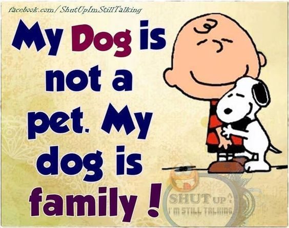Dog is family!!!!
