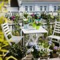 Balkon Sichtschutz mit vertikalem Garten - Günstig & effektiv