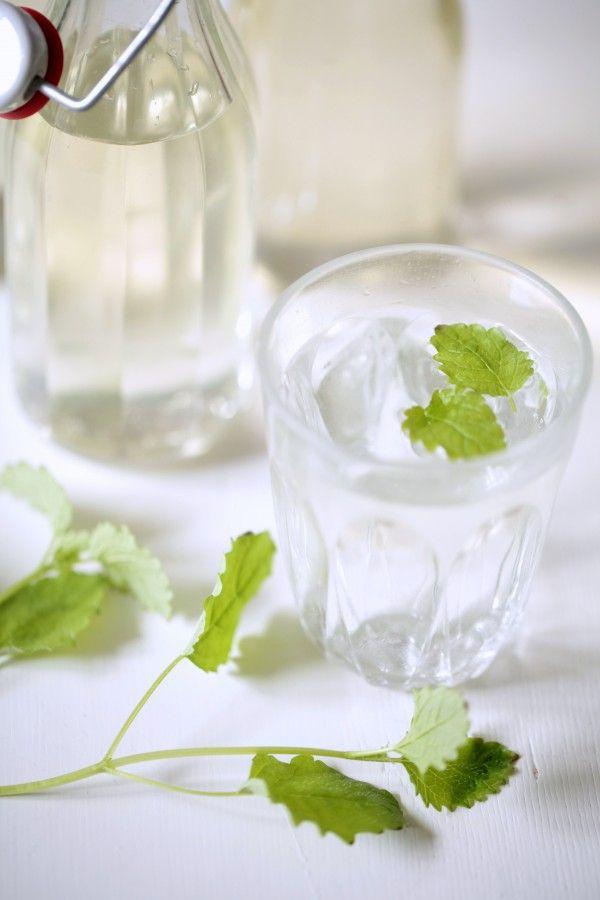 [ Saft med citronmeliss ] ca 7 dl citronmeliss (löst packad) / 1 citron / 7 dl socker / 7 dl vatten / 2 msk citronsyra | Mät upp citronmeliss – det gör inget om det blir mer än 7 dl (ger mer smak). Skrubba, skiva citron. Lägg m citronmelissen i stor bunke. Koka upp socker + vatten. Ta från värmen, rör ner citronsyra. Slå över citronmelissen, låt stå m duk över minst 1 dygn. Rör om då och då. Sila, tappa på väl rengjorda flaskor. Späd ca 1 del saft, 5 delar vatten.